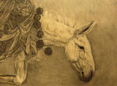 Broken Donkey