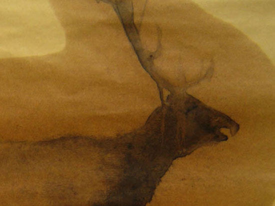 Stag (sold)