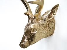 Golden Deer Head